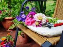 Les beaux jours au jardin